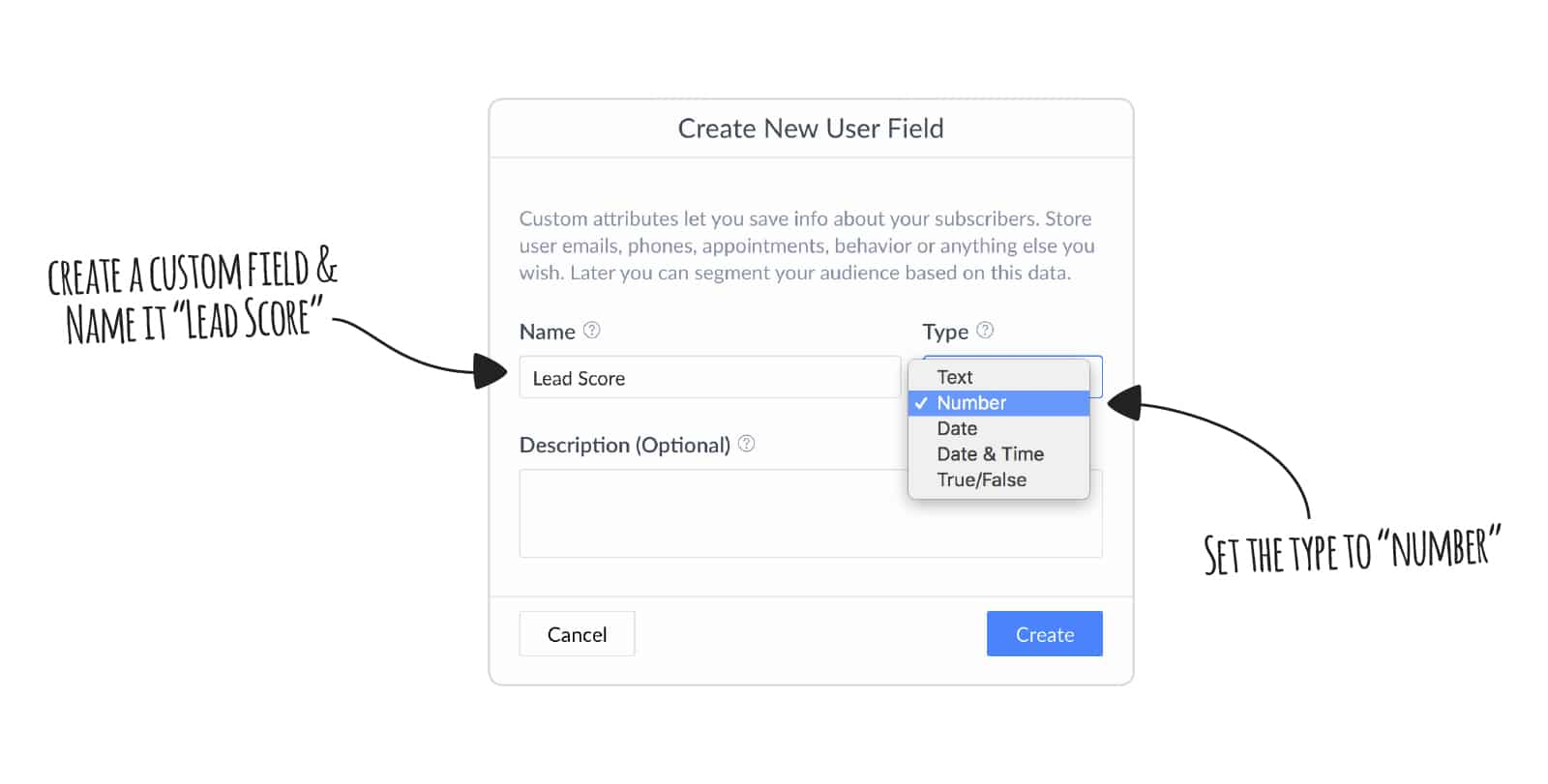 Create lead scoring user field